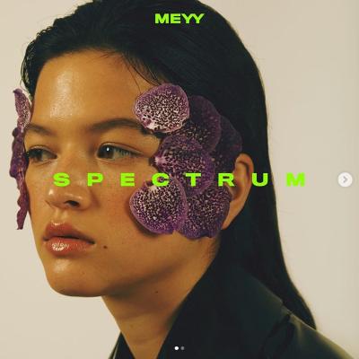20200131(a)_Meyy_Spectrum