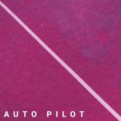 20200528(s)_Mister-Moon_Auto-Pilot